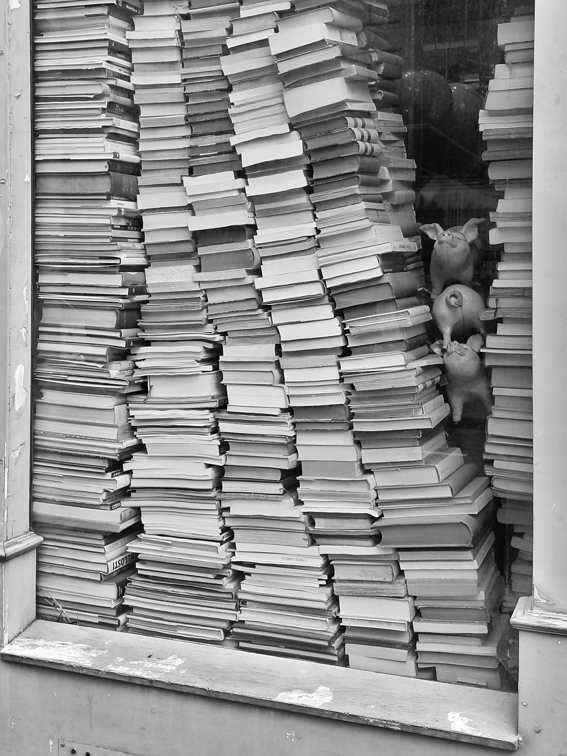 Books - Librairie Rue Vivienne Paris.jpg