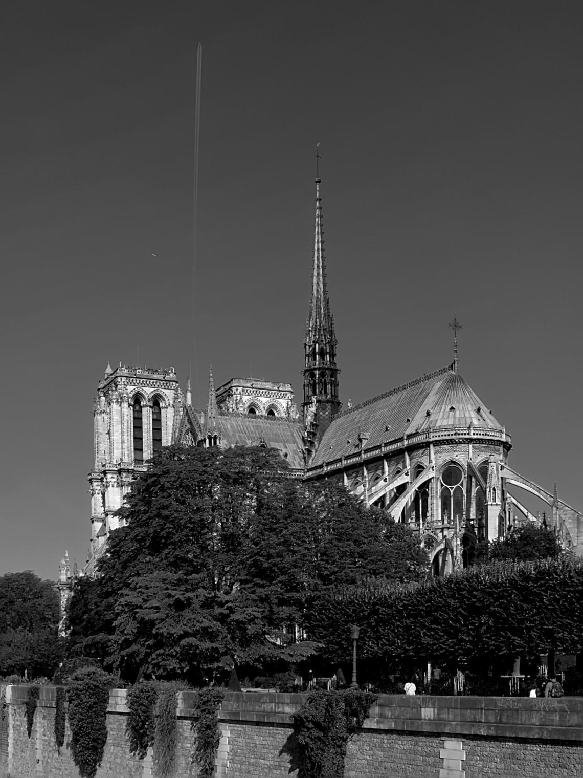 notre-dame_de_paris_vue_du_pont_de_l27archevc3a9chc3a9